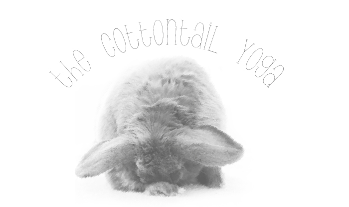 Cottontail Yoga