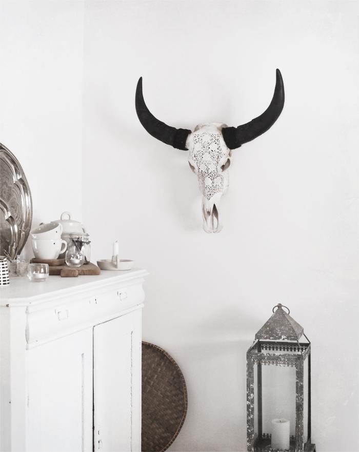 Lace longhorn
