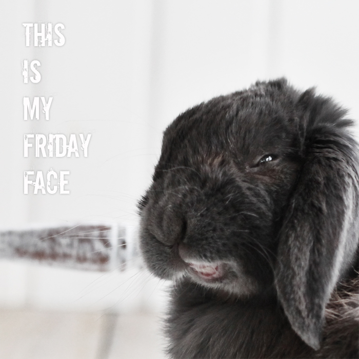FridayFace