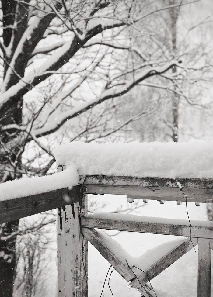 Winter_3