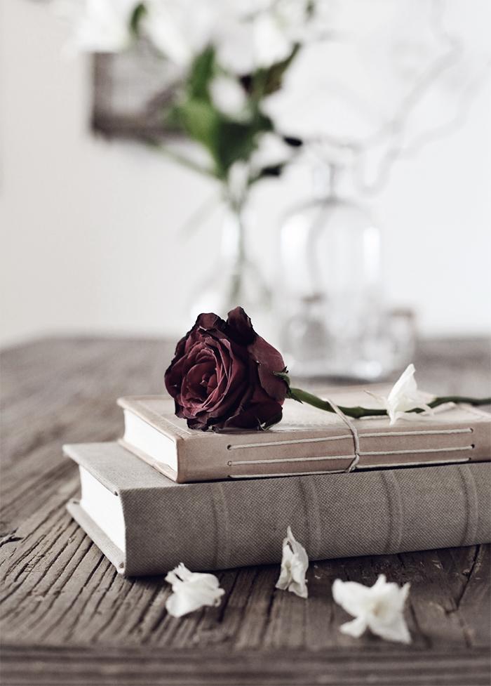 Still_rose_2