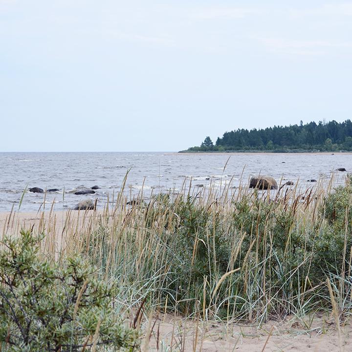 Rullsand_shore_720