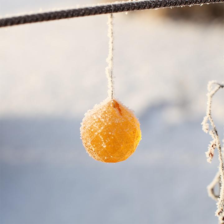 frosty_ball
