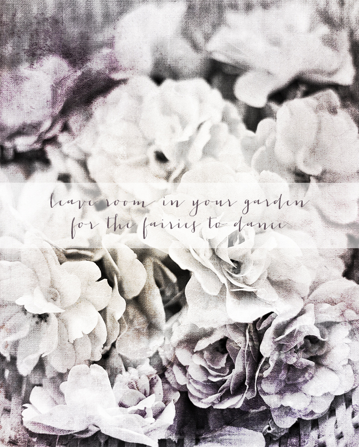 roses_160717_2_lo_quote