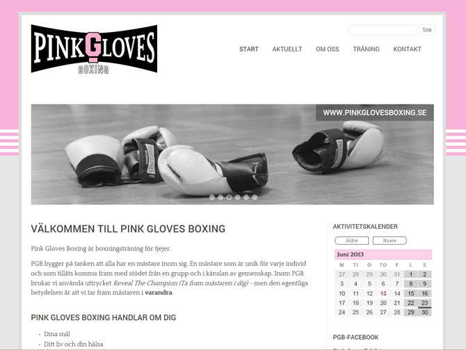 Pinkglovesboxing
