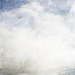 Fjärilsjakt och konsten att flyga